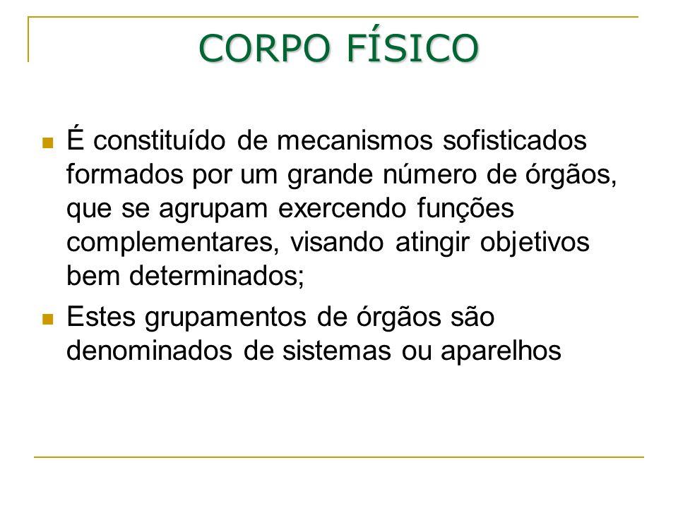 CORPO FÍSICO É constituído de mecanismos sofisticados formados por um grande número de órgãos, que se agrupam exercendo funções complementares, visand