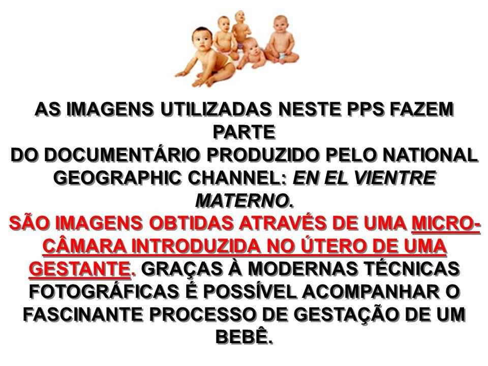 AS IMAGENS UTILIZADAS NESTE PPS FAZEM PARTE DO DOCUMENTÁRIO PRODUZIDO PELO NATIONAL GEOGRAPHIC CHANNEL: EN EL VIENTRE MATERNO.