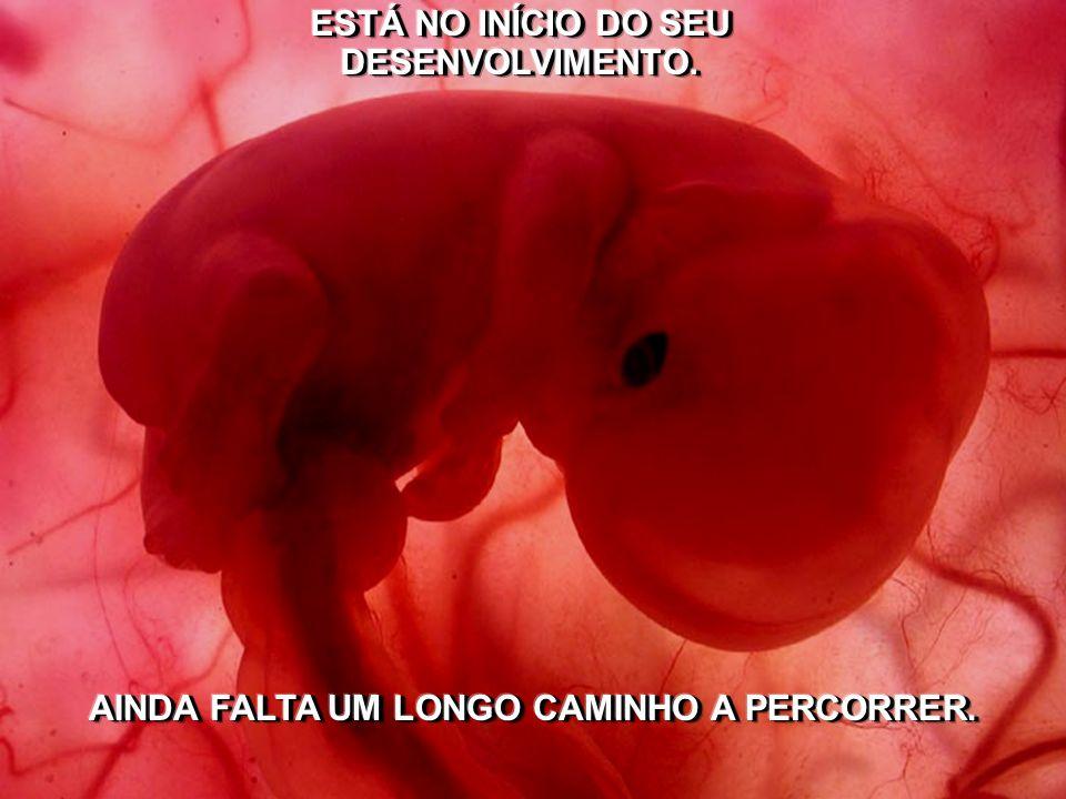A CULPA INSTALADA NA CONSCIÊNCIA DA PESSOA QUE ABORTOU, TAMBÉM LEVA A MUITAS DIFICULDADES, SUGERE-SE ENTÃO O AUTO-PERDÃO.