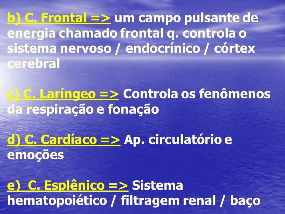 b) C. Frontal => um campo pulsante de energia chamado frontal q. controla o sistema nervoso / endocrínico / córtex cerebral c) C. Laríngeo => Controla