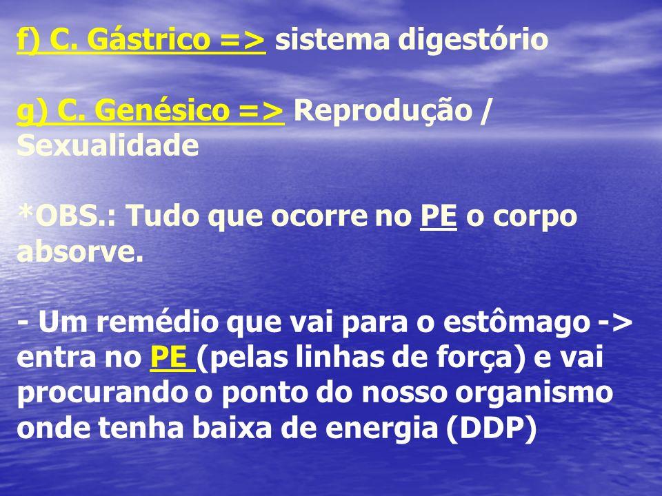 f) C. Gástrico => sistema digestório g) C. Genésico => Reprodução / Sexualidade *OBS.: Tudo que ocorre no PE o corpo absorve. - Um remédio que vai par