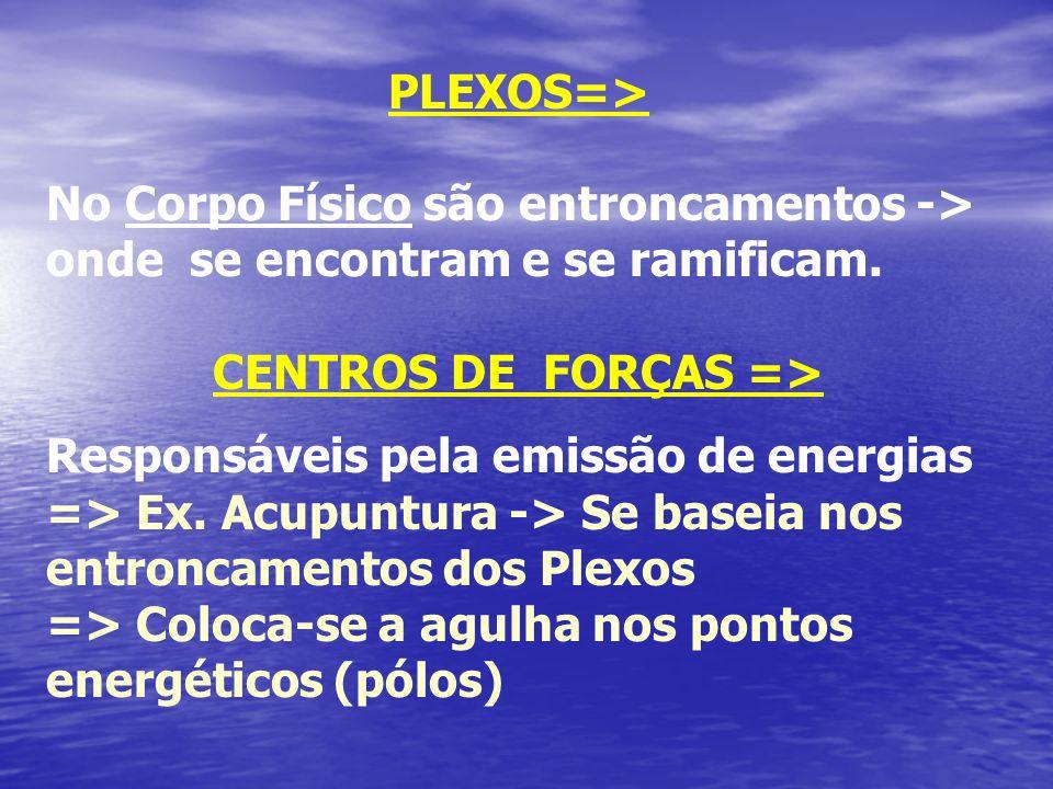 PLEXOS=> No Corpo Físico são entroncamentos -> onde se encontram e se ramificam. CENTROS DE FORÇAS => Responsáveis pela emissão de energias => Ex. Acu