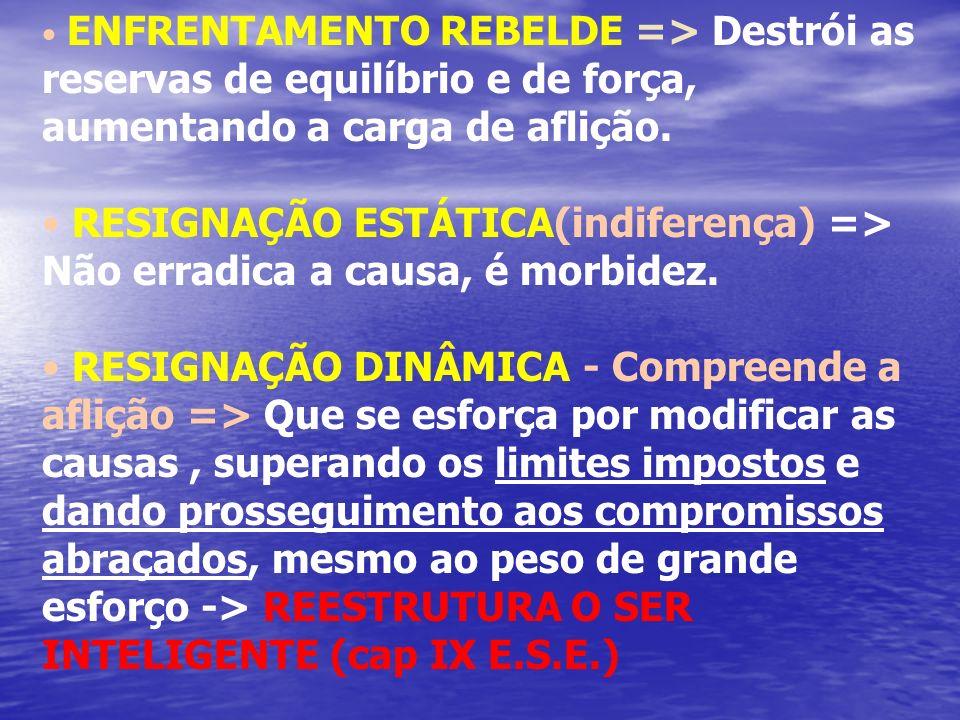 ENFRENTAMENTO REBELDE => Destrói as reservas de equilíbrio e de força, aumentando a carga de aflição. RESIGNAÇÃO ESTÁTICA(indiferença) => Não erradica