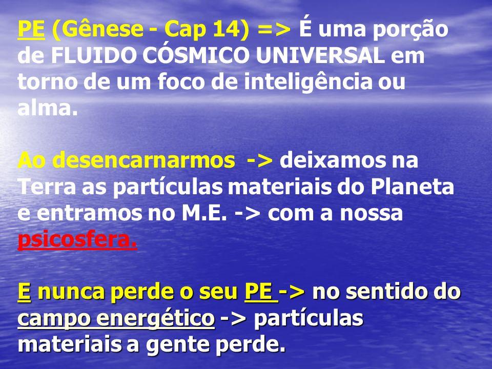 PE (Gênese - Cap 14) => É uma porção de FLUIDO CÓSMICO UNIVERSAL em torno de um foco de inteligência ou alma. Ao desencarnarmos -> deixamos na Terra a