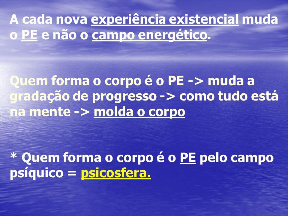 CENTROS DE FORÇA - Incontáveis Nº s de centros de Força - Os mais importantes: a) C.