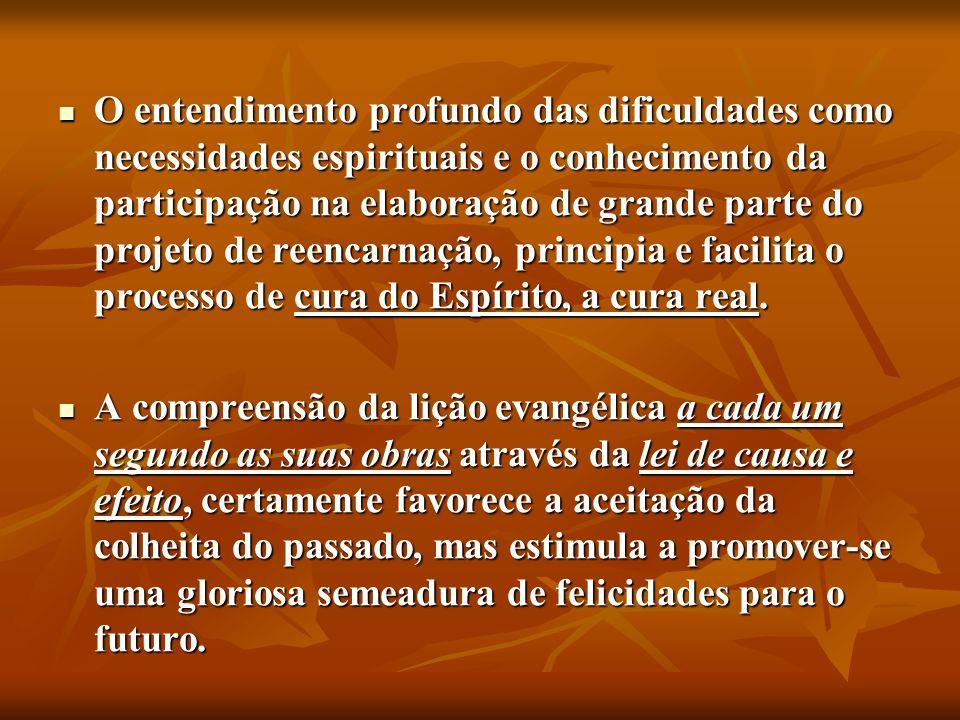 O entendimento profundo das dificuldades como necessidades espirituais e o conhecimento da participação na elaboração de grande parte do projeto de re