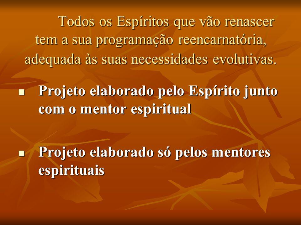 Todos os Espíritos que vão renascer tem a sua programação reencarnatória, adequada às suas necessidades evolutivas. Projeto elaborado pelo Espírito ju