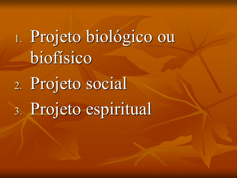 1. Projeto biológico ou biofísico 2. Projeto social 3. Projeto espiritual