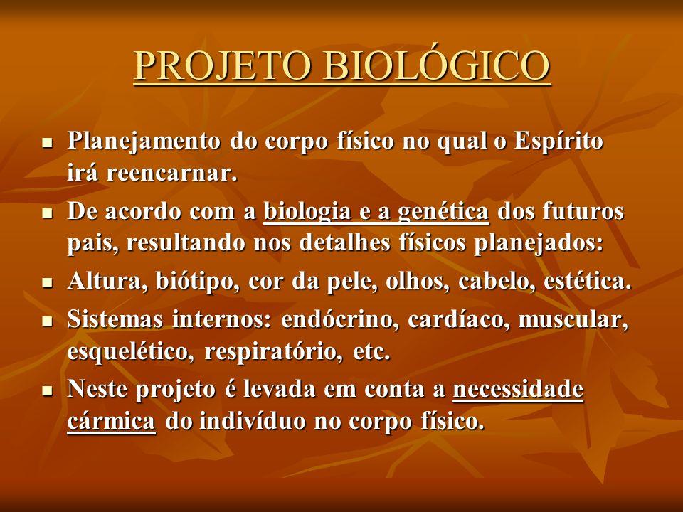 Projeto e objetivos 1.