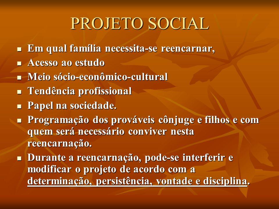 PROJETO SOCIAL Em qual família necessita-se reencarnar, Em qual família necessita-se reencarnar, Acesso ao estudo Acesso ao estudo Meio sócio-econômic