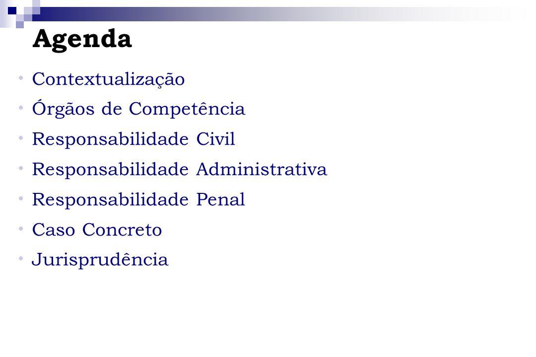 Contextualização Órgãos de Competência Responsabilidade Civil Responsabilidade Administrativa Responsabilidade Penal Caso Concreto Jurisprudência Agen