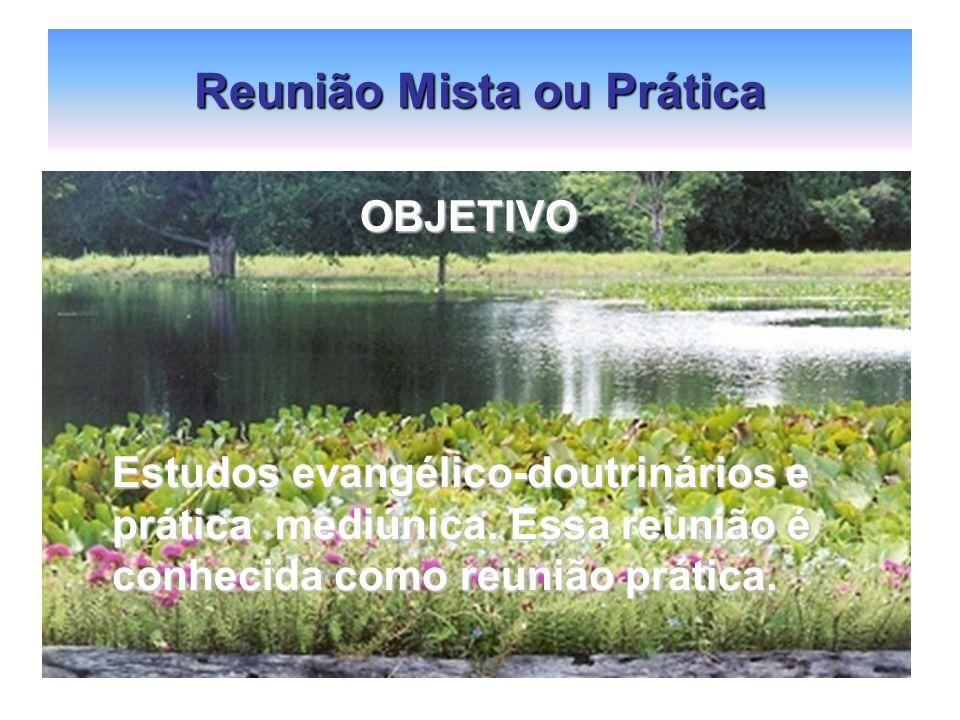 Reunião Mista ou Prática OBJETIVO OBJETIVO Estudos evangélico-doutrinários e prática mediúnica. Essa reunião é conhecida como reunião prática.