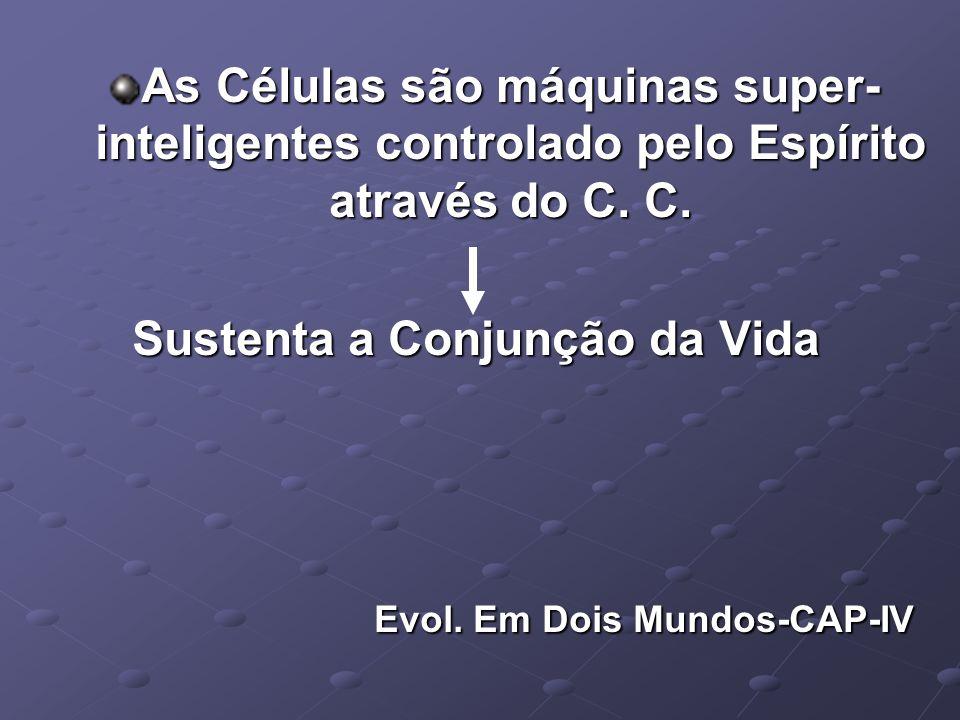 As Células são máquinas super- inteligentes controlado pelo Espírito através do C.