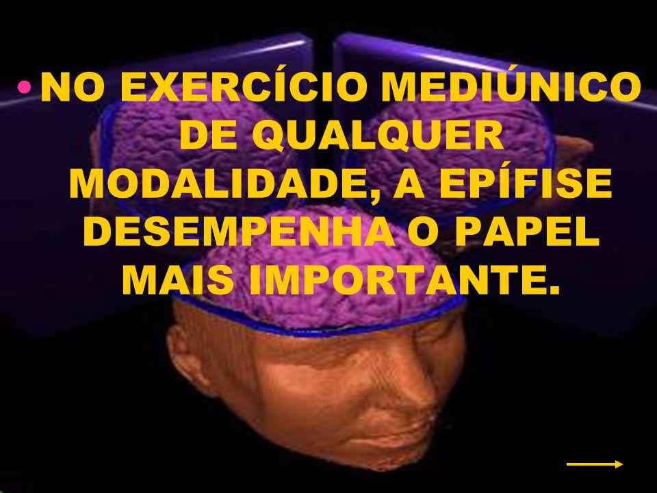 NO EXERCÍCIO MEDIÚNICO DE QUALQUER MODALIDADE, A EPÍFISE DESEMPENHA O PAPEL MAIS IMPORTANTE.