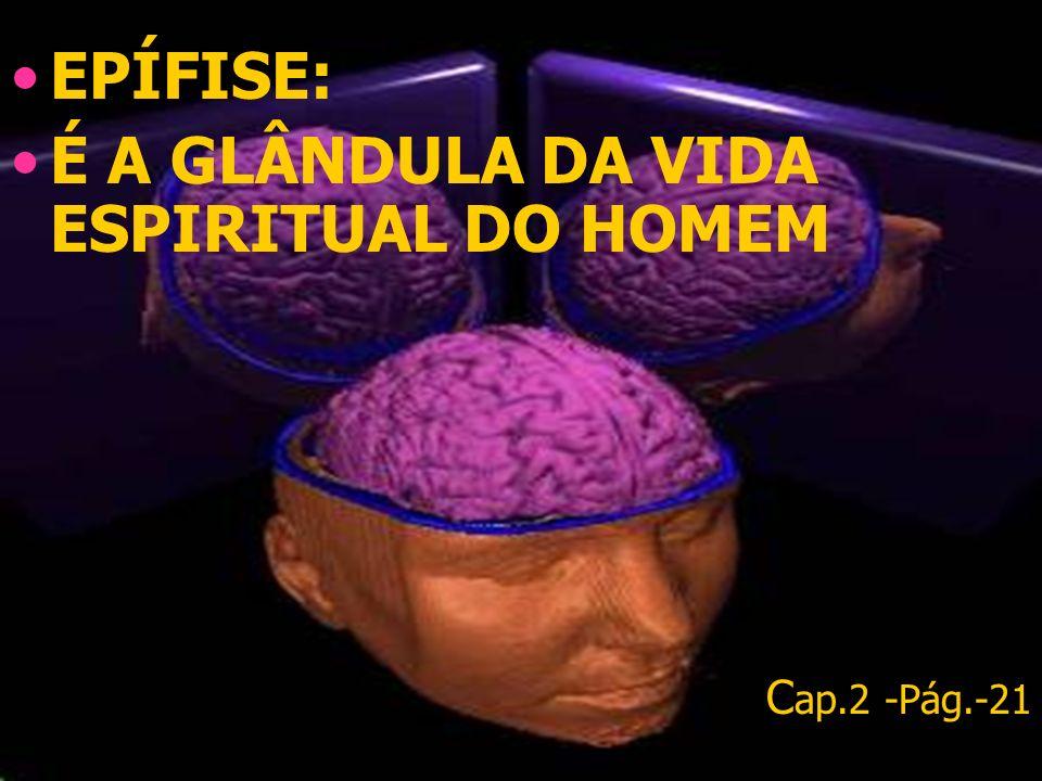EPÍFISE: É A GLÂNDULA DA VIDA ESPIRITUAL DO HOMEM C ap.2 -Pág.-21