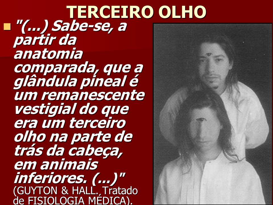TERCEIRO OLHO (...) Sabe-se, a partir da anatomia comparada, que a glândula pineal é um remanescente vestigial do que era um terceiro olho na parte de trás da cabeça, em animais inferiores.
