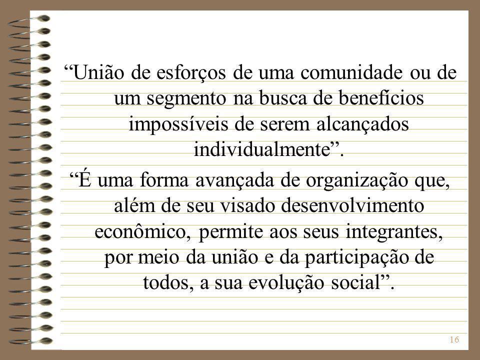 17 Sociedade ou empresa constituída por membros de determinado grupo econômico ou social e que objetiva desempenhar, em benefício comum, determinada atividade econômica.