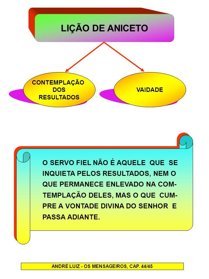 LIÇÃO DE ANICETO CONTEMPLAÇÃO DOS RESULTADOS VAIDADE ANDRÉ LUIZ - OS MENSAGEIROS, CAP. 44/45 O SERVO FIEL NÃO É AQUELE QUE SE INQUIETA PELOS RESULTADO