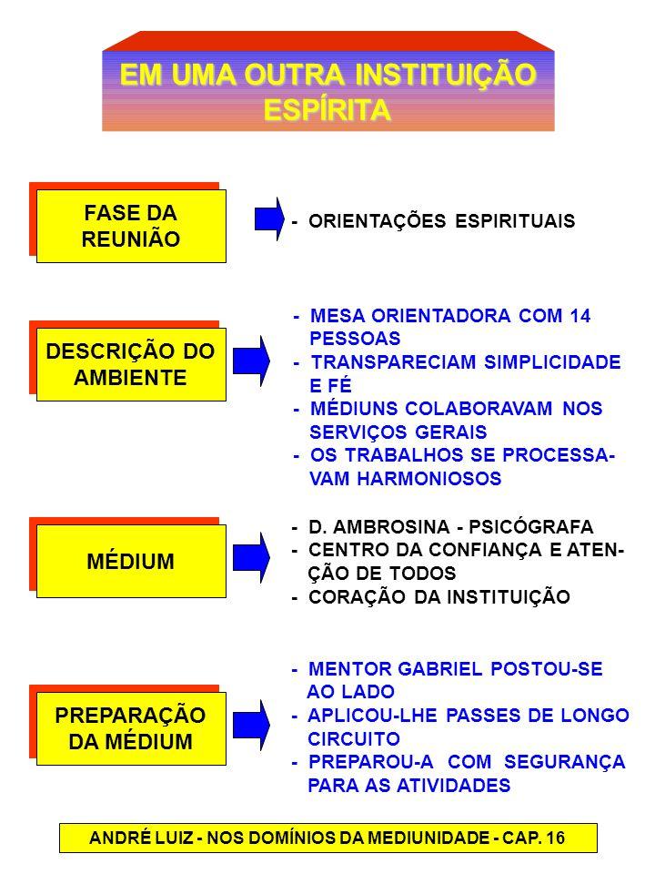 EM UMA OUTRA INSTITUIÇÃO ESPÍRITA MÉDIUM DESCRIÇÃO DO AMBIENTE DESCRIÇÃO DO AMBIENTE FASE DA REUNIÃO FASE DA REUNIÃO PREPARAÇÃO DA MÉDIUM PREPARAÇÃO D