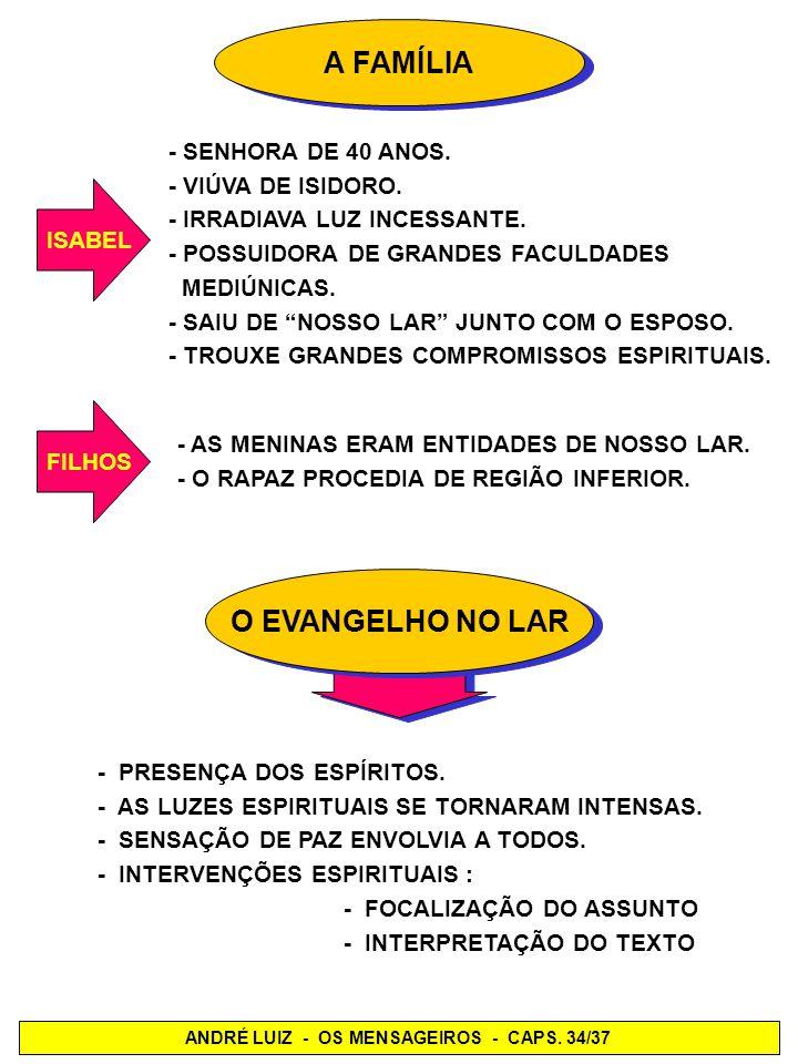 EXPLICAÇÃO DE ÁULUS CHEGADA DOS ESPÍRITOSENCARNADOS DESLIGADOS PELO SONO - PARECIAM CONVALESCENTES - TITUBEANTES, DOENTES - REVELAVAM BOA VONTADE NA RECEPÇÃO - INCAPACIDADE DE RETENÇÃO - VACILANTES - ENFRAQUECIDOS - NÃO ENTENDIA COM PRECISÃO - MANTINHAM-SE LÚCIDOS MAIORIA MUITOS RAROS SÃO OS ENCARNADOS A SE VALEREM DO DES- PRENDIMENTO, PELO SONO, QUE SE REUNIAM A NÓS, APROVEITANDO O AUXÍLIO DE ENTIDADES GENEROSAS E DEDICADAS.