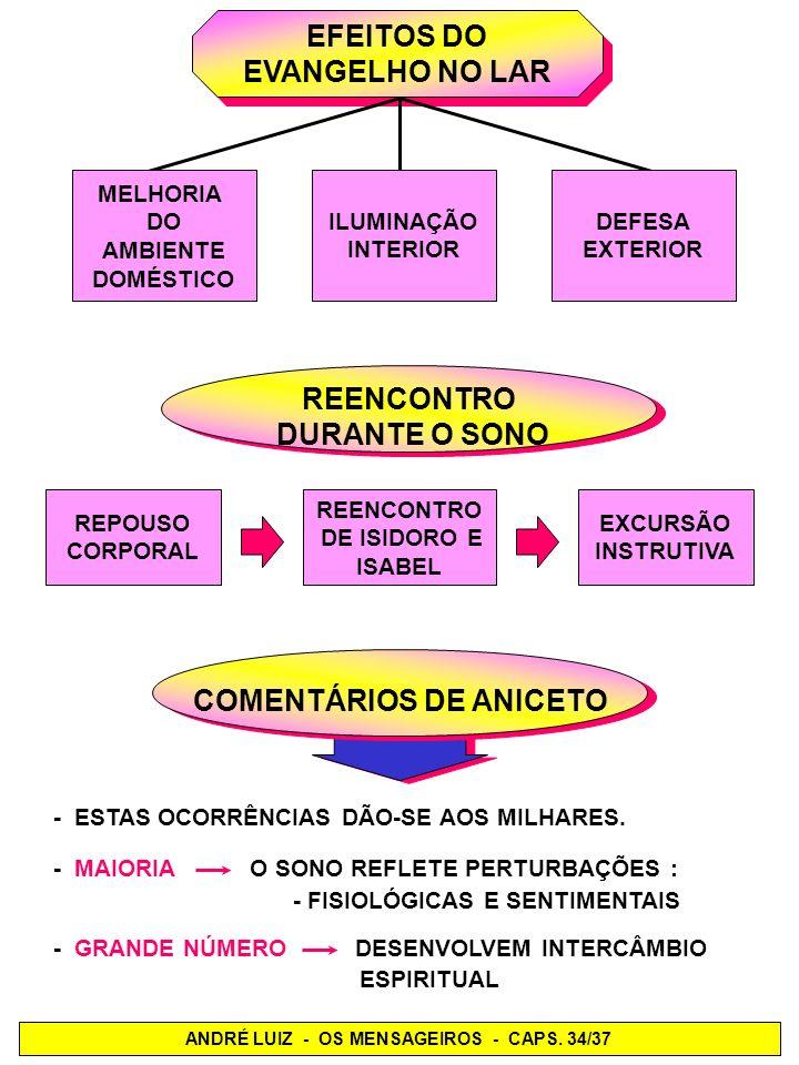 - O ESFORÇO DOS TRABALHADORES ESPIRITUAIS ALIADO À ABNEGAÇÃO DOS ENCARNADOS, CO- MOVIA-ME O CORAÇÃO.