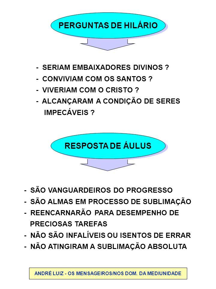 PASSE NOS DESENCARNADOS LOCAL ANDRÉ LUIZ - OS MENSAGEIROS, CAP.