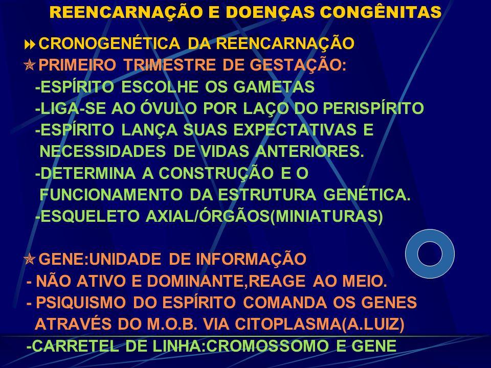 REENCARNAÇÃO E DOENÇAS CONGÊNITAS GENÉTICA DETERMINISMO CAIU C/ GENOMA HUMANO * Nº DE GENES QUASE IGUAL AO PÉ DE MILHO *GENE REGULADO POR PTNA DO CITO