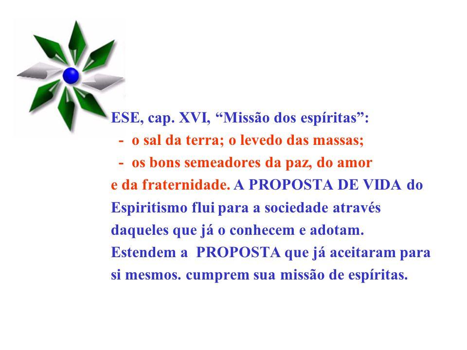 ESE, cap. XVI, Missão dos espíritas: - o sal da terra; o levedo das massas; - os bons semeadores da paz, do amor e da fraternidade. A PROPOSTA DE VIDA