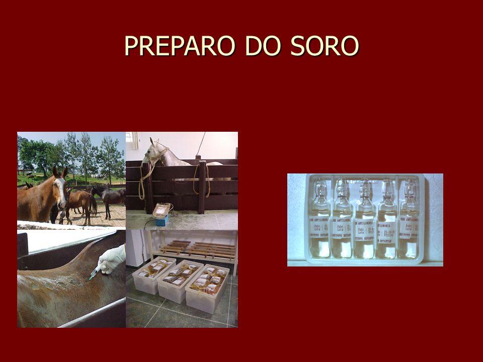 PREPARO DO SORO