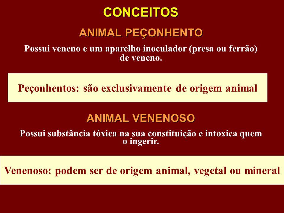 CONCEITOS ANIMAL PEÇONHENTO Possui veneno e um aparelho inoculador (presa ou ferrão) de veneno. ANIMAL VENENOSO Possui substância tóxica na sua consti