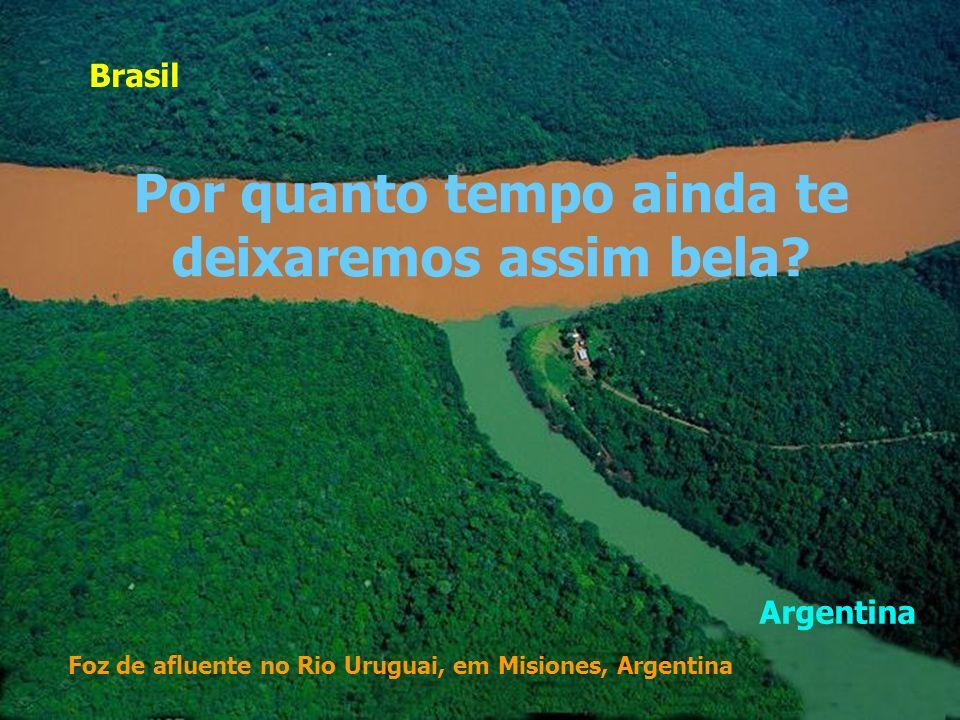 Patagônia, Argentina O que será da Mãe Natureza, se nossas crianças não desfrutarem deste espetáculo chamado Terra?