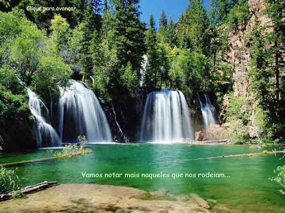 Vamos amar mais... Aceitar a Vida, pois ela é realizada por você... Clique para avançar...