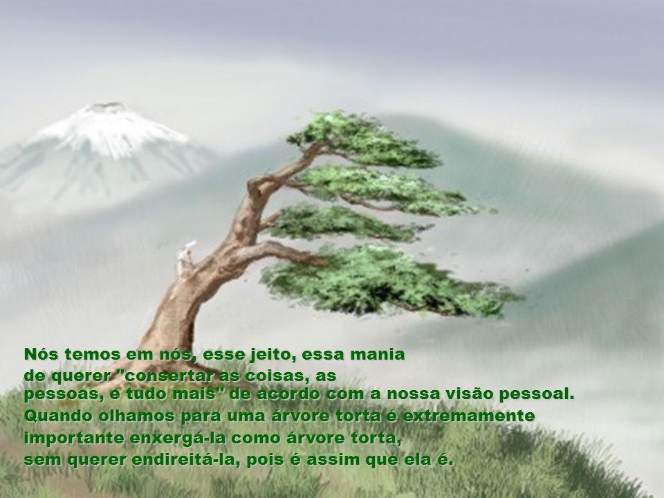 Ninguém ganhou o prêmio e o velho sábio explicou ao povo ansioso, que ver aquela árvore em sua posição correta era