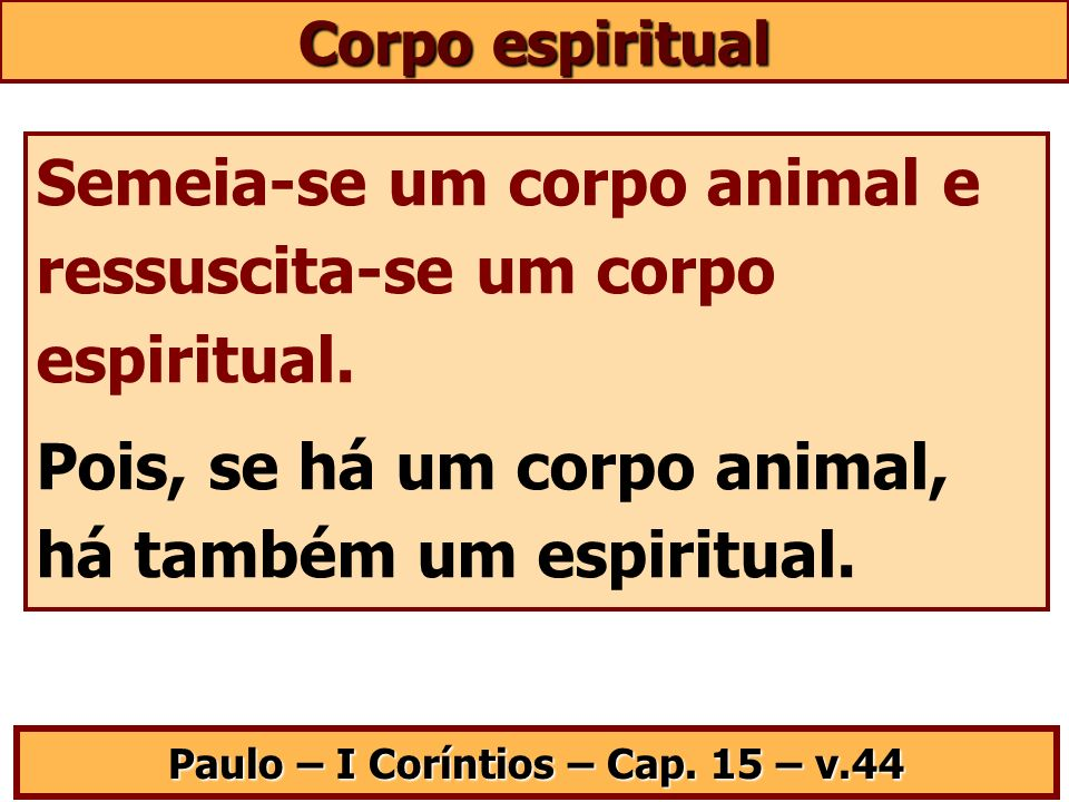 Corpo espiritual Semeia-se um corpo animal e ressuscita-se um corpo espiritual. Pois, se há um corpo animal, há também um espiritual. Paulo – I Corínt