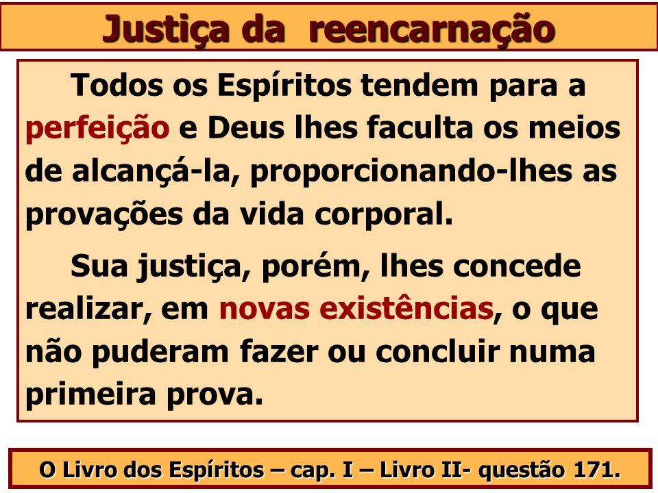Justiça da reencarnação O Livro dos Espíritos – cap. I – Livro II- questão 171. Todos os Espíritos tendem para a perfeição e Deus lhes faculta os meio