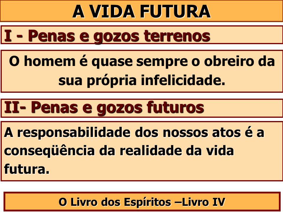 A VIDA FUTURA I - Penas e gozos terrenos II- Penas e gozos futuros O Livro dos Espíritos –Livro IV O homem é quase sempre o obreiro da sua própria inf