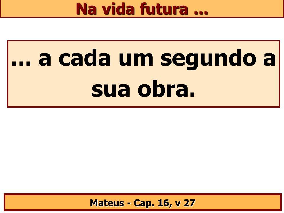 ... a cada um segundo a sua obra. Mateus - Cap. 16, v 27 Na vida futura...