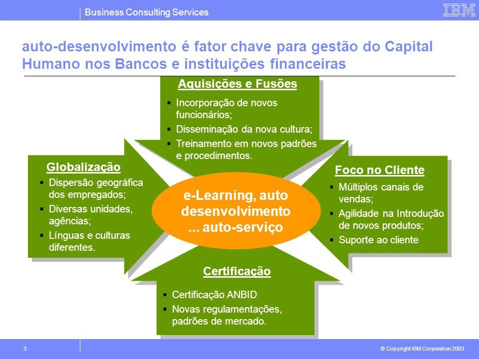 Business Consulting Services © Copyright IBM Corporation 2003 3 auto-desenvolvimento é fator chave para gestão do Capital Humano nos Bancos e institui