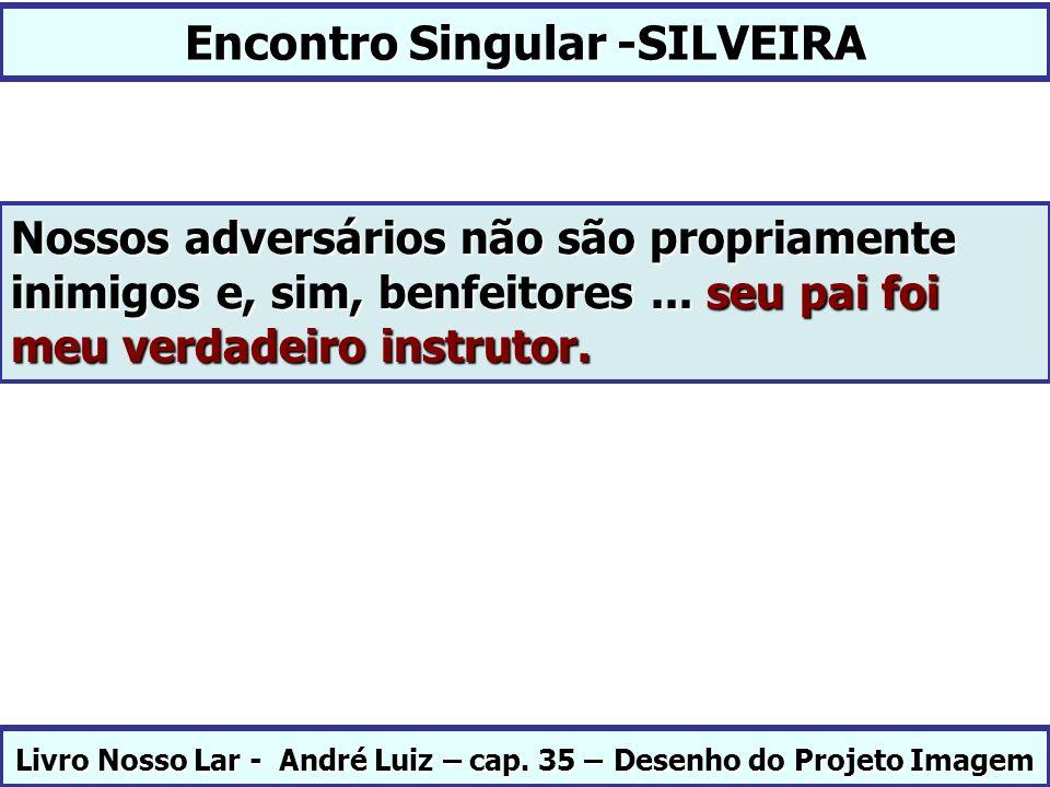Encontro Singular -SILVEIRA Livro Nosso Lar - André Luiz – cap. 35 – Desenho do Projeto Imagem Nossos adversários não são propriamente inimigos e, sim
