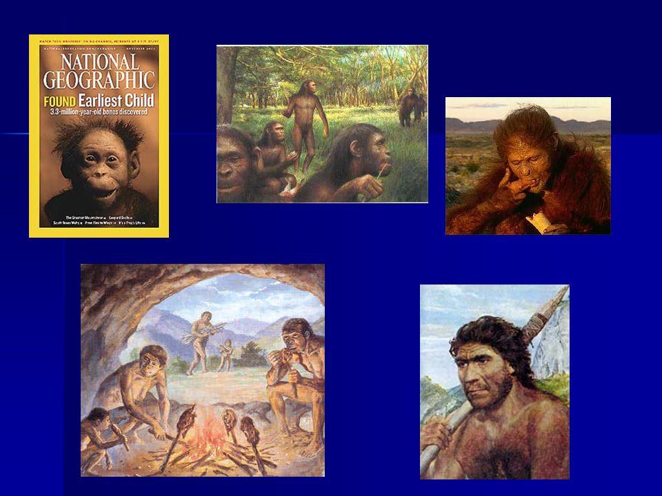 A Gênese Teoria da providência Divina Se não nos deparando nas criaturas, encarnadas ou desencarnadas, as qualidades necessárias à produção de tal resultado, temos que subir mais alto, isto é, ao próprio Criador.