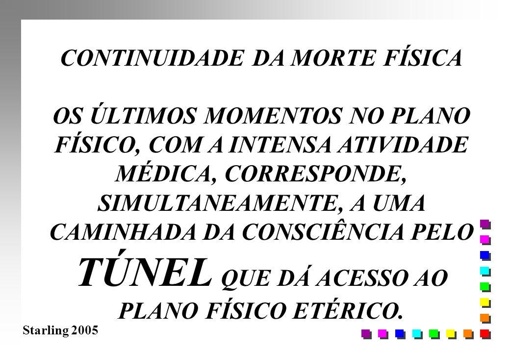 Starling 2005 CONTINUIDADE DA MORTE FÍSICA OS ÚLTIMOS MOMENTOS NO PLANO FÍSICO, COM A INTENSA ATIVIDADE MÉDICA, CORRESPONDE, SIMULTANEAMENTE, A UMA CA