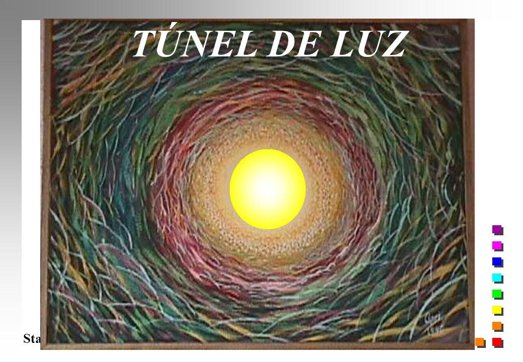 Starling 2005 TÚNEL DE LUZ