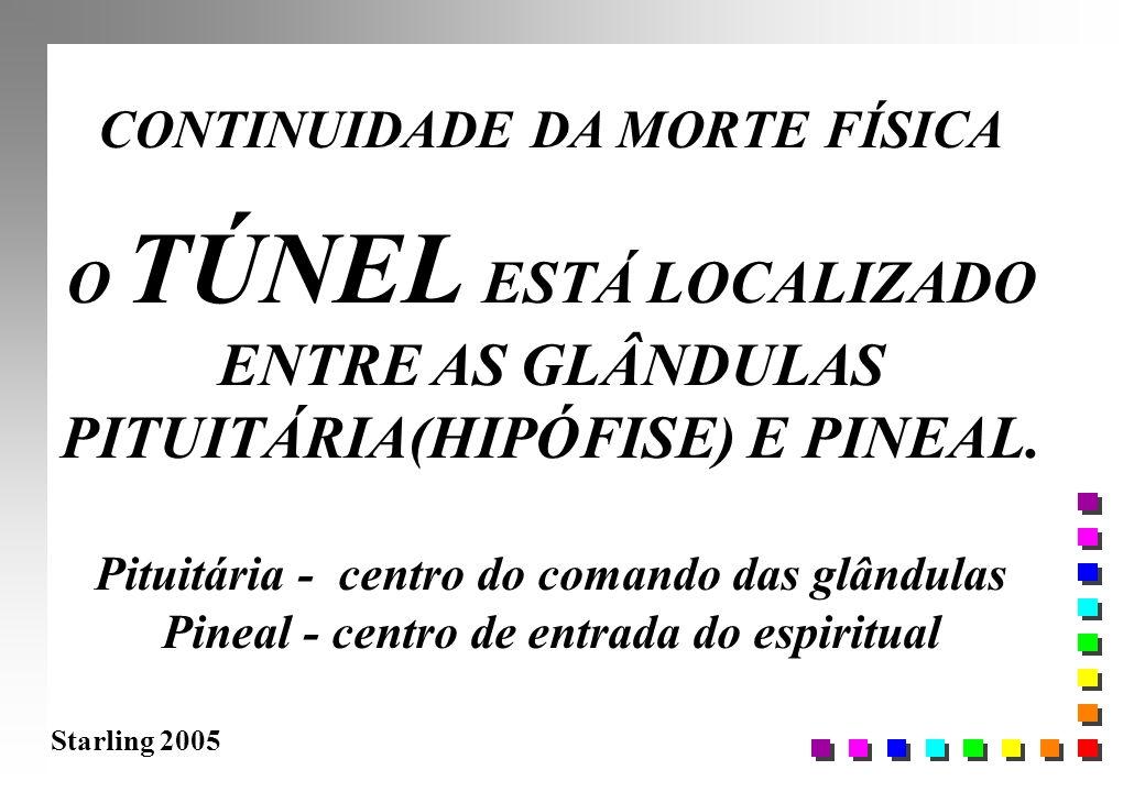 Starling 2005 CONTINUIDADE DA MORTE FÍSICA O TÚNEL ESTÁ LOCALIZADO ENTRE AS GLÂNDULAS PITUITÁRIA(HIPÓFISE) E PINEAL. Pituitária - centro do comando da