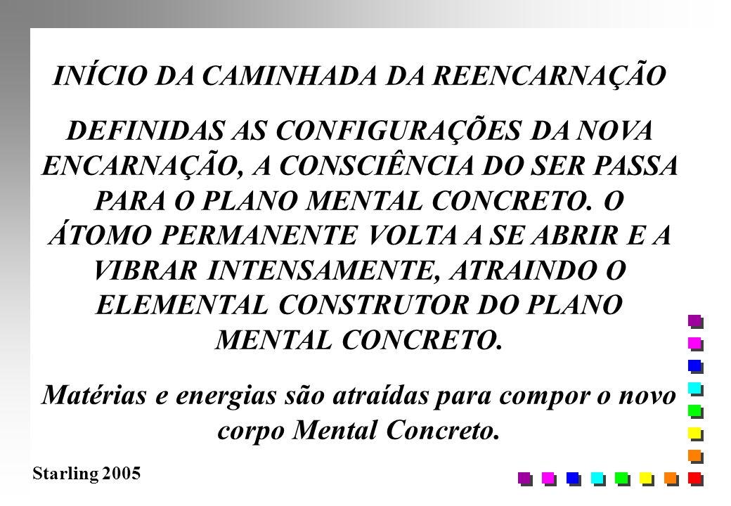 Starling 2005 INÍCIO DA CAMINHADA DA REENCARNAÇÃO DEFINIDAS AS CONFIGURAÇÕES DA NOVA ENCARNAÇÃO, A CONSCIÊNCIA DO SER PASSA PARA O PLANO MENTAL CONCRE