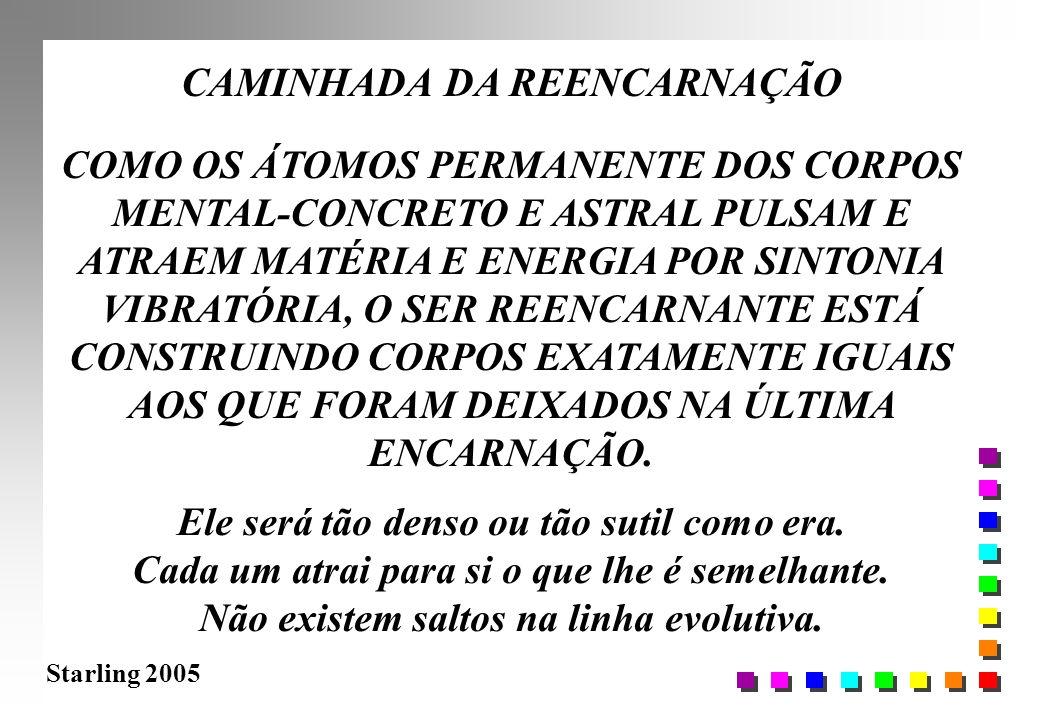 Starling 2005 CAMINHADA DA REENCARNAÇÃO COMO OS ÁTOMOS PERMANENTE DOS CORPOS MENTAL-CONCRETO E ASTRAL PULSAM E ATRAEM MATÉRIA E ENERGIA POR SINTONIA V