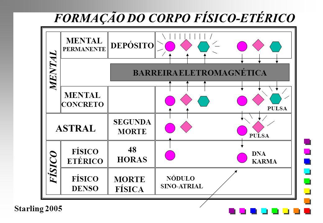 Starling 2005 FORMAÇÃO DO CORPO FÍSICO-ETÉRICO FÍSICO DENSO FÍSICO ETÉRICO ASTRAL MENTAL CONCRETO MORTE FÍSICA 48 HORAS BARREIRA ELETROMAGNÉTICA PULSA