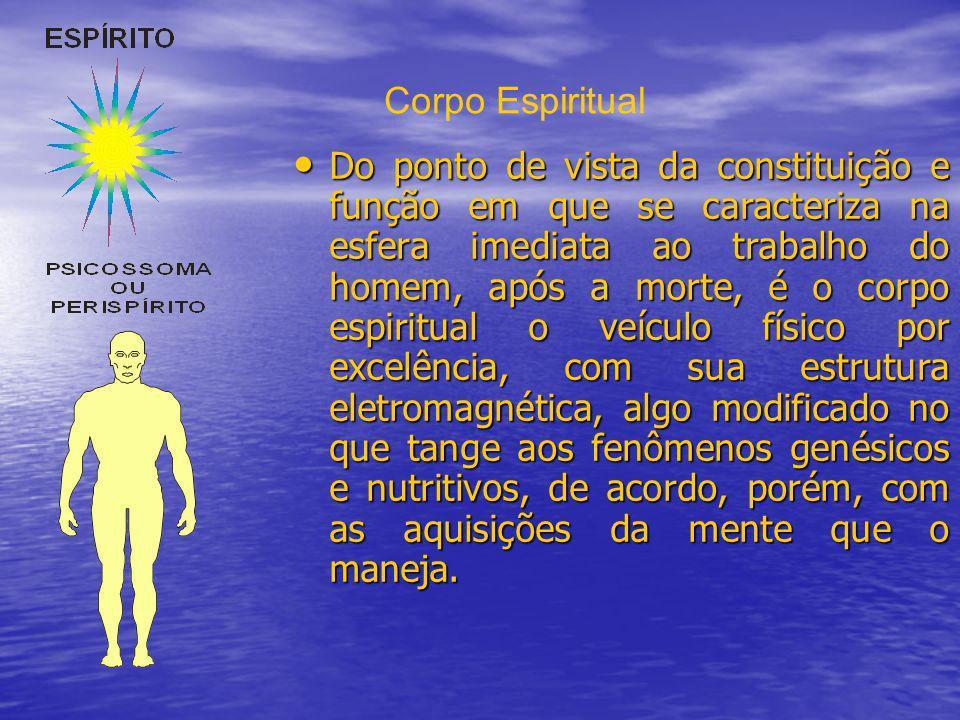 Do ponto de vista da constituição e função em que se caracteriza na esfera imediata ao trabalho do homem, após a morte, é o corpo espiritual o veículo