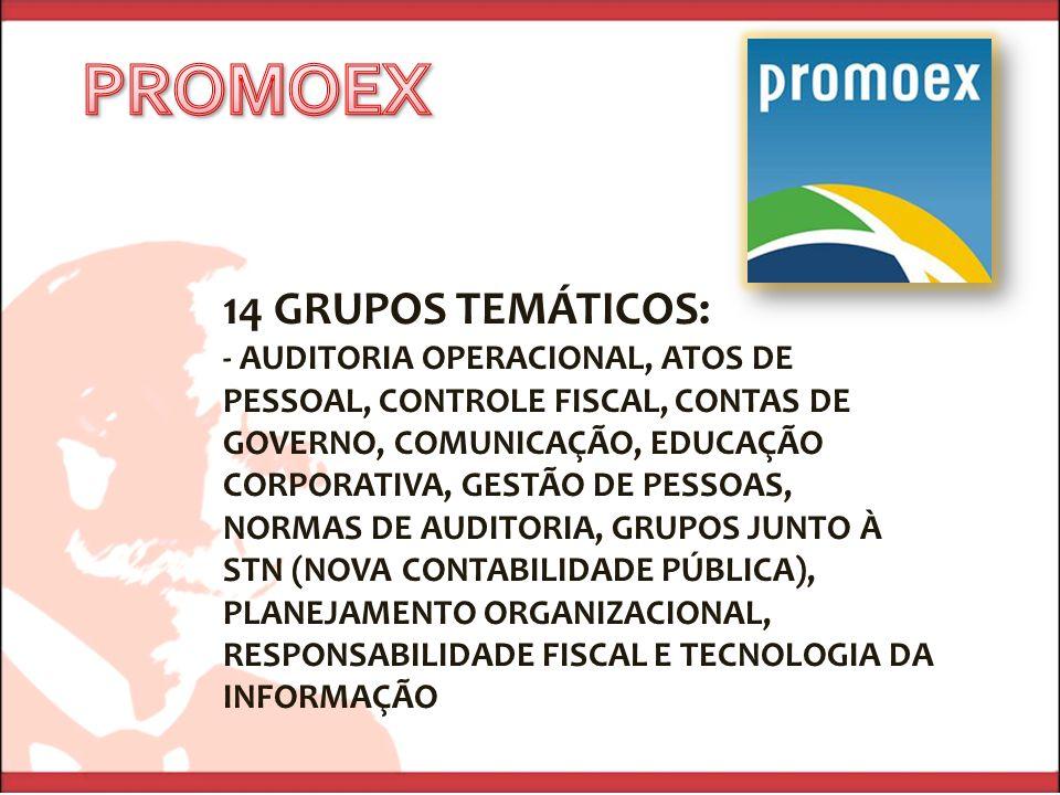 14 GRUPOS TEMÁTICOS: - AUDITORIA OPERACIONAL, ATOS DE PESSOAL, CONTROLE FISCAL, CONTAS DE GOVERNO, COMUNICAÇÃO, EDUCAÇÃO CORPORATIVA, GESTÃO DE PESSOA