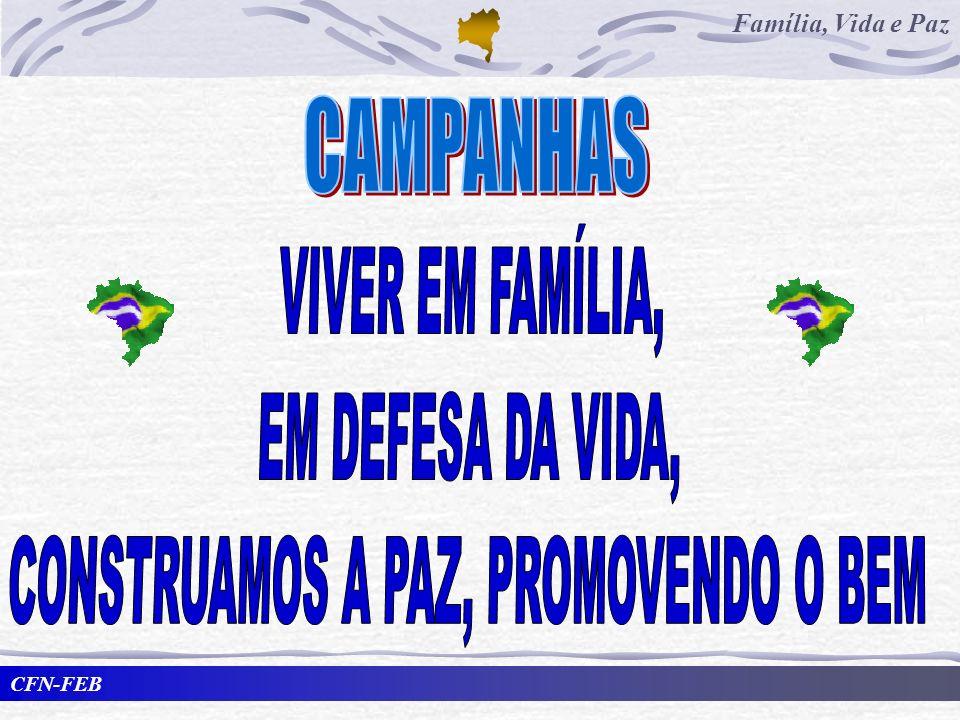 CFN-FEB Família, Vida e Paz Por que as campanhas.
