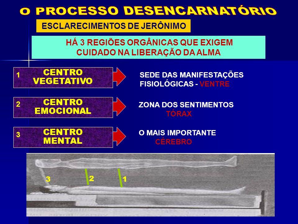 ESCLARECIMENTOS DE JERÔNIMO HÁ 3 REGIÕES ORGÂNICAS QUE EXIGEM CUIDADO NA LIBERAÇÃO DA ALMA CENTRO VEGETATIVO SEDE DAS MANIFESTAÇÕES FISIOLÓGICAS - VEN